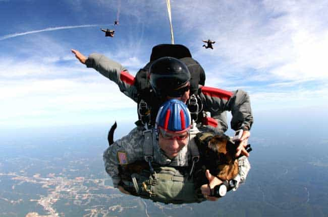 what are the chances of dying while skydiving