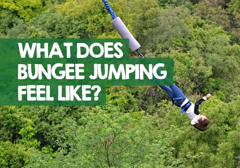 What Does Bungee Jumping Feel Like